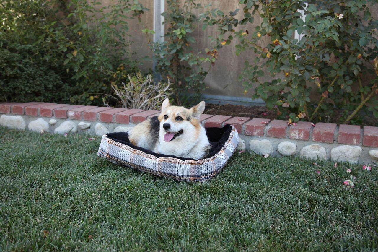 Kensington Reversible Dog Bed, Citrus Slate, XL