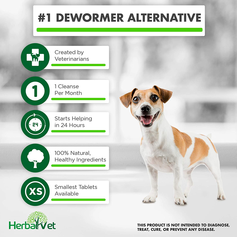 10 Dog wormer pills treats 55# per pill worm free all wormer