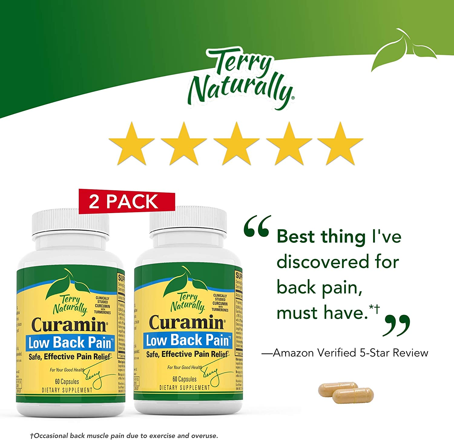 Terry Naturally Curamin Low Back Pain 2 Pack – 60 Vegan Capsules – Targeted Relief Supplement, Supports Healthy Cartilage Comfort – Non-GMO, Gluten-Free – 20 Servings