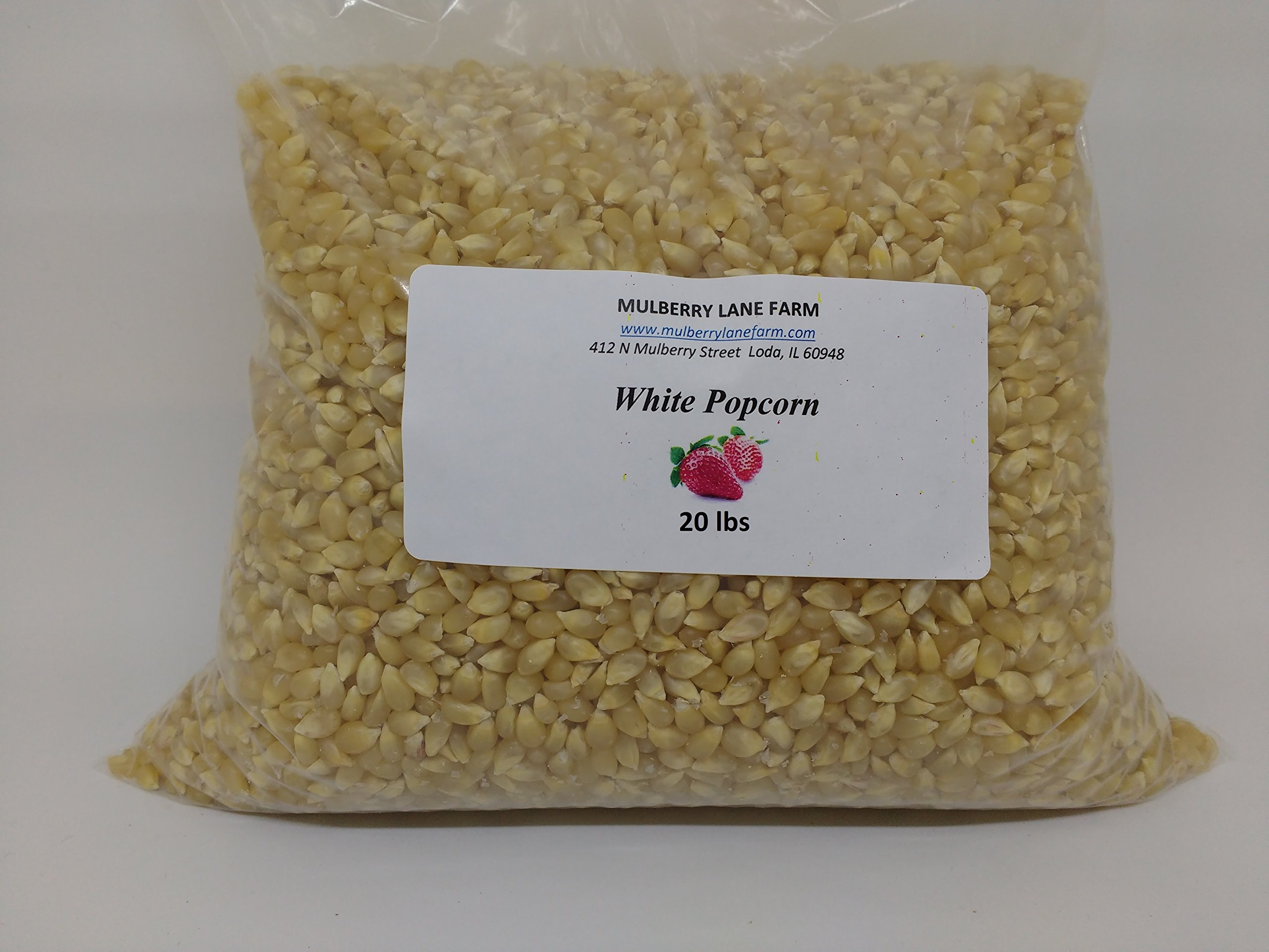 White Popcorn Popping Corn, 20 lbs (twenty pounds) Kernels All Natural Non-GMO Whole Grain, BULK