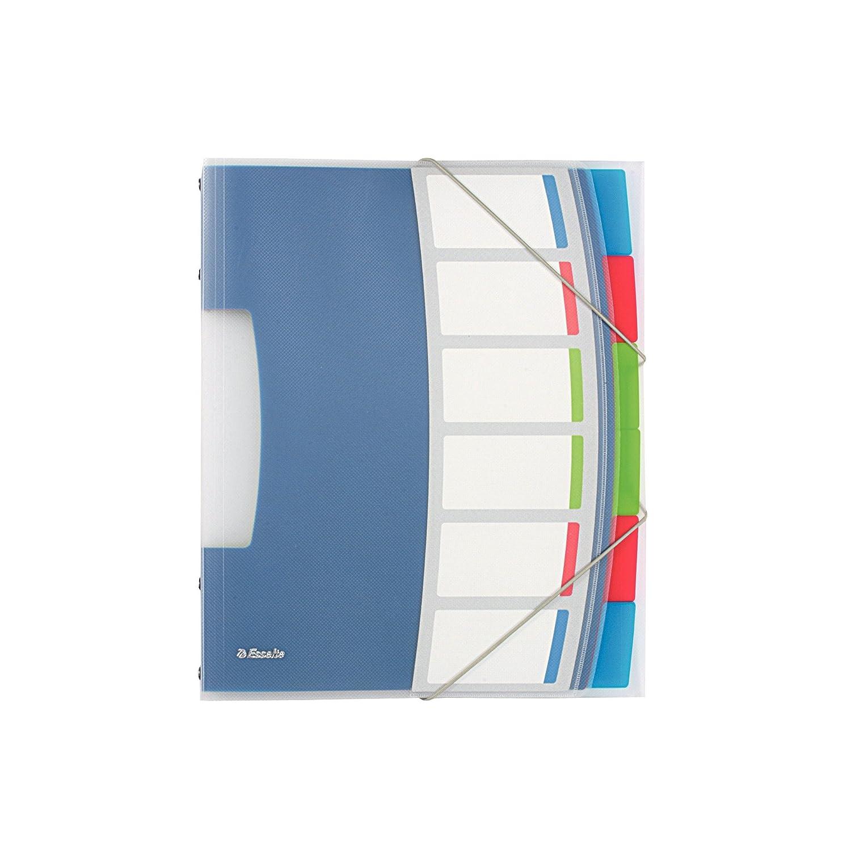 Esselte 624030 Libro monitore, Formato A4, 12 scomparti indicizzati, Chiusura a elastico, Polipropilene, Traslucido, VIVIDA