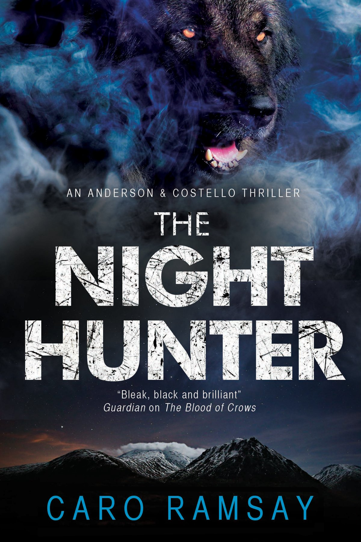 Read Online Night Hunter, The: An Anderson & Costello police procedural set in Scotland (An Anderson & Costello Mystery) PDF