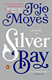Silver Bay: A Novel (English Edition)