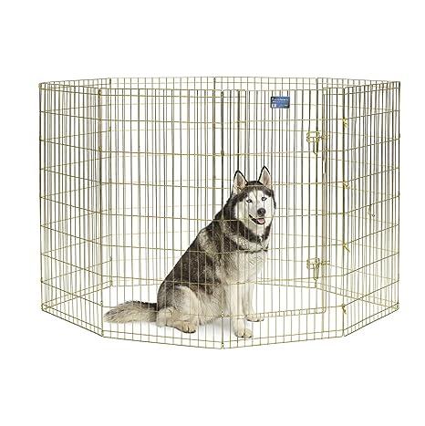 Amazon.com: Hogares para mascotas de Midwest, corral de ...