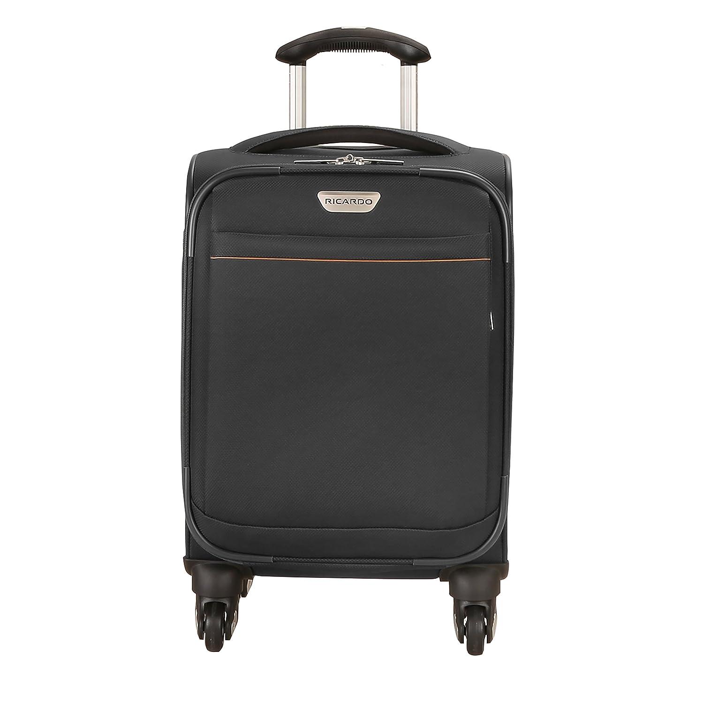 Amazon.com | Ricardo Beverly Hills Mar Vista 2.0 17-inch Carry-on ...