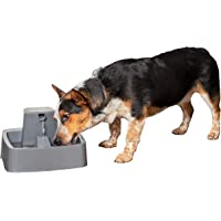 PetSafe Drinkwell 1 Gallon Pet Fountain – for Cats, Small to Medium Dogs – 1 Gallon Capacity – Adjustable Flow Control…