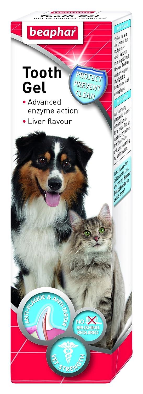 Beaphar Dog & Cat Toothgel 100g x 6 Beaphar UK Ltd 17323