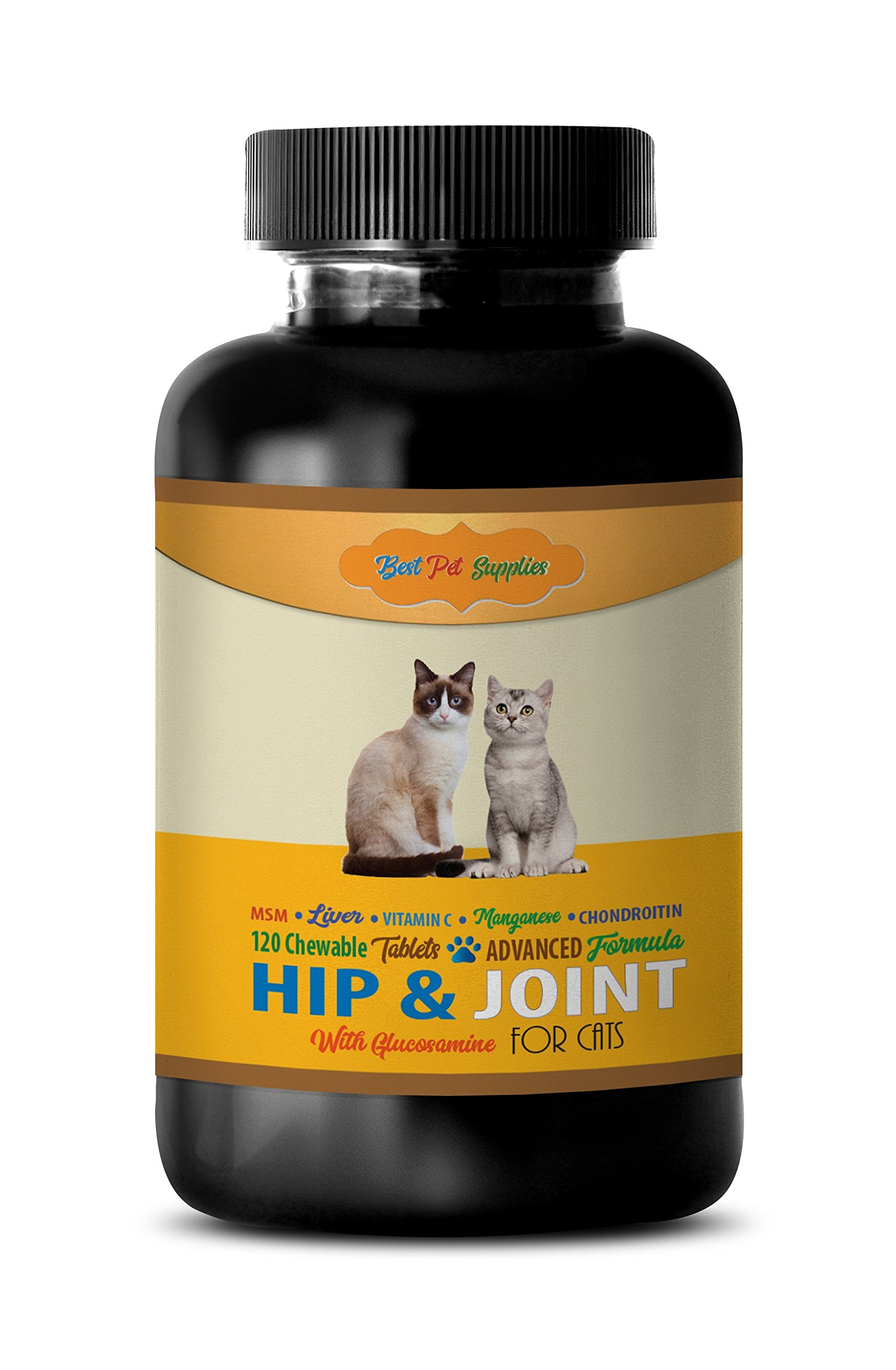 BEST PET SUPPLIES LLC cat senior treats - PREMIUM HIP AND JOINT SUPPORT - CATS HEALTH - MOBILITY SUPPORT - cat liver support - 120 Chews (1 Bottle)