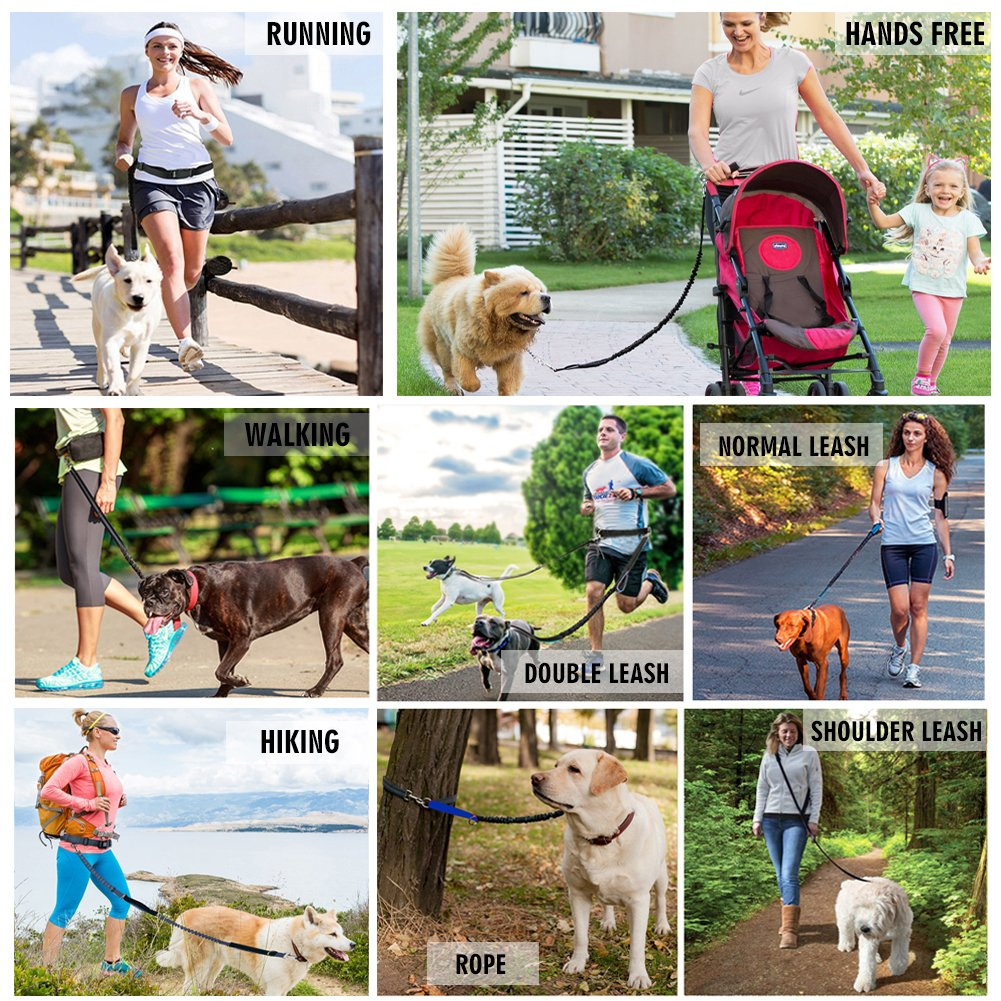 Hands Free Dog Leash for Running Walking Training Hiking, Dual-Handle Reflective Bungee, Poop Bag Dispenser Pouch, Adjustable Waist Belt, Shock Absorbing, Ideal for Medium to Large Dogs (Black W Blue) LANNEY