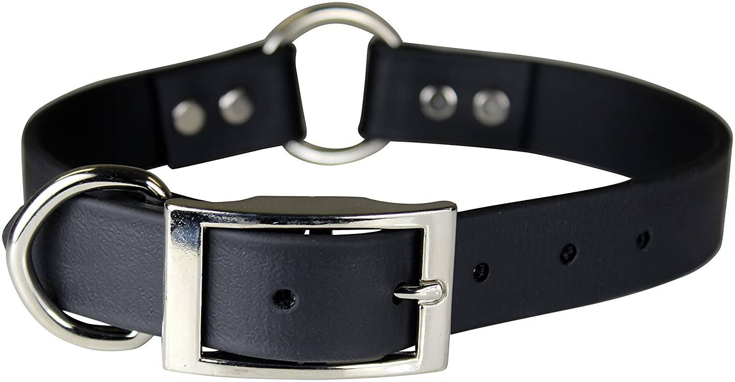 Black 1\ Black 1\ OmniPet 110A-BK28 Zeta Ring in Center with Dee Dog Collar, 1  x 28 , Black