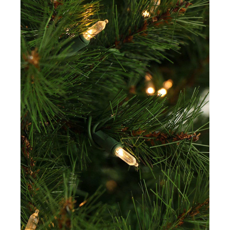 Amazoncom Fraser Hill Farm 75 Ft Southern Peace Pine Christmas