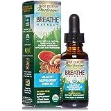 Host Defense, Breathe Extract, Respiratory Support, Mushroom Supplement with Cordyceps, Reishi and Chaga, Vegan, Organic, 1 oz (30 Servings)