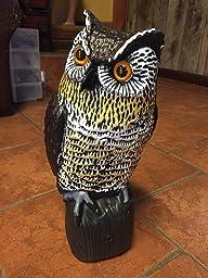 Amazon Com Hoont Realistic Owl Scarecrow With Flashing