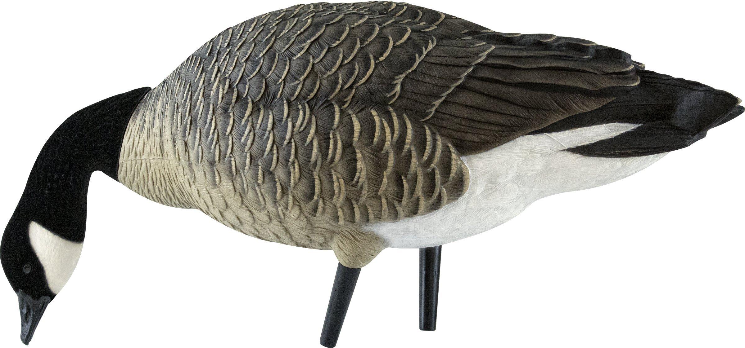 Avian-X Flocked Feeder Lesser Goose Decoys 6 pack by Avian-X (Image #3)