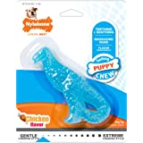 Nylabone Puppy Dental Dinosaur Chew Toy for Teething Puppies Chicken Flavor Small/Regular - Up to 25 lbs.