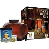 Mr. Beer Classic American Light Stater Beer Making Kit, 2 Gallon