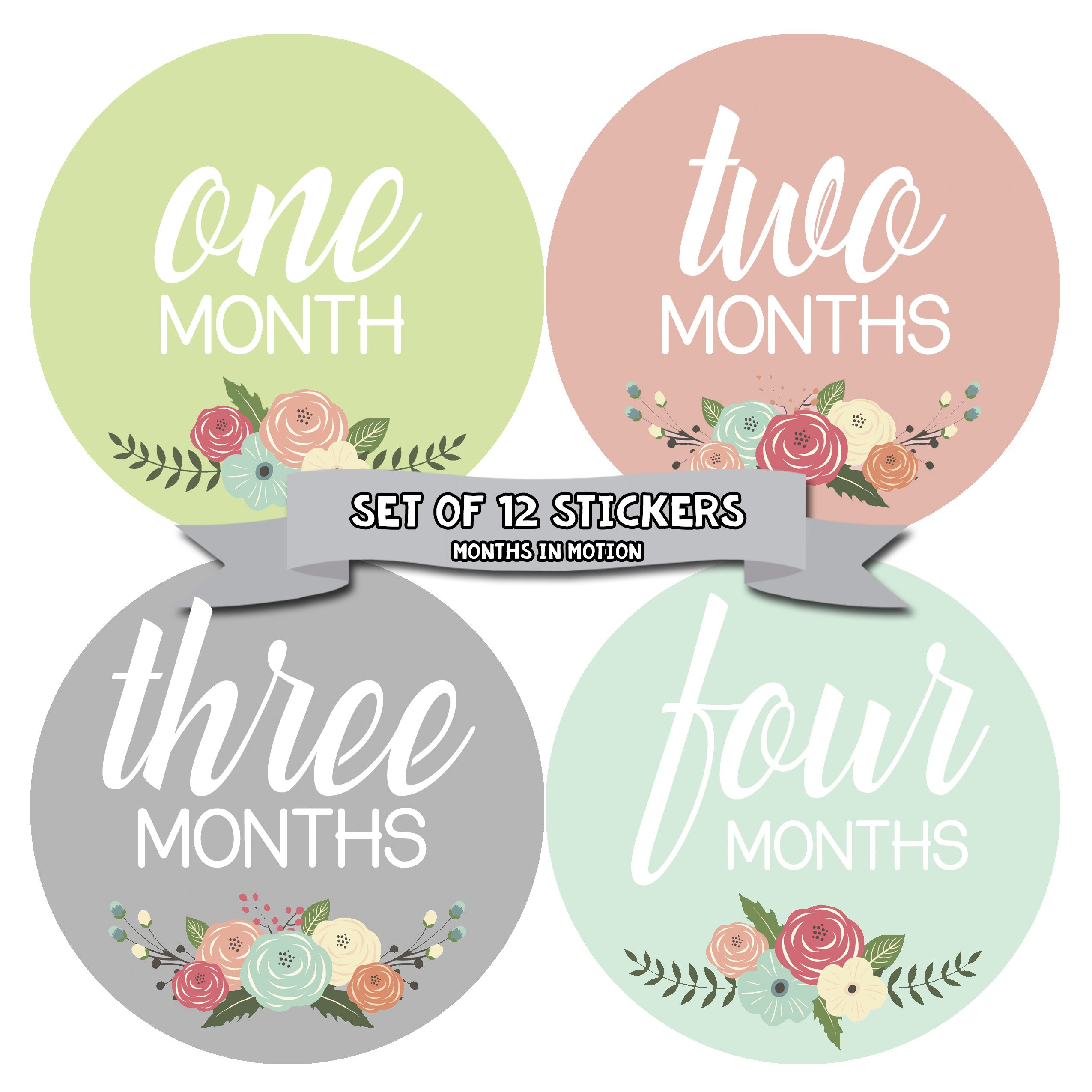 Months In Motion - Baby Month Stickers - Monthly Baby Sticker for Girls - Floral (1105) by Months In Motion