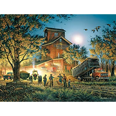 White Mountain Puzzles Bountiful Harvest-550 Piece Jigsaw Puzzle: Toys & Games