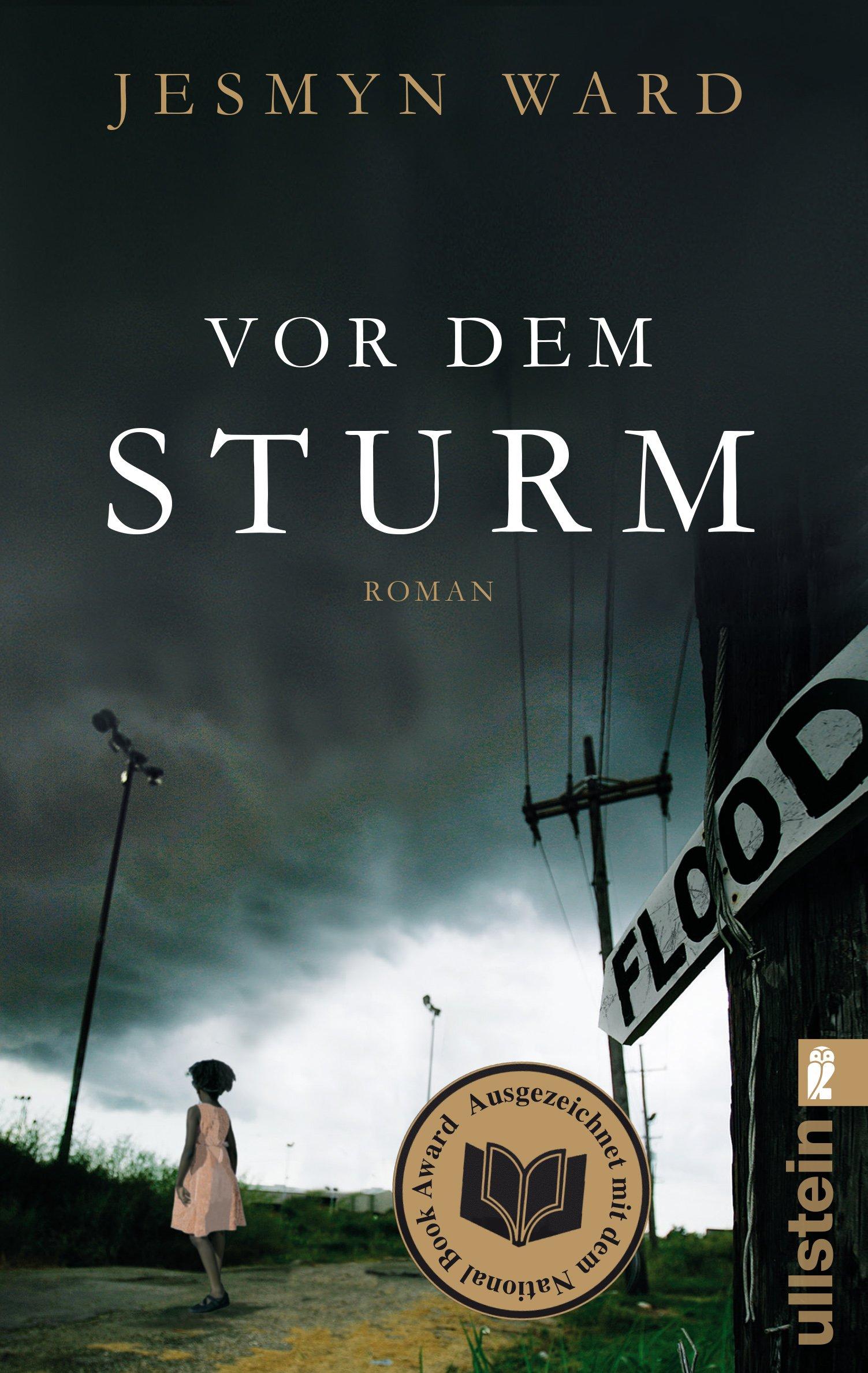 Vor dem Sturm: Roman