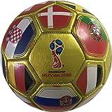 8d28d1ea4 Icon Sports FIFA 2018 World Cup Russia Official Souvenir Size 2 Mini Soccer  Ball