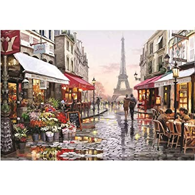 1000 Pieces Jigsaw Puzzles, Large Puzzles Toy Intellectual Educational Game for Adults Kids, Paris Flower Street Jigsaw Puzzle DIY Art Project for Home Wall Decor, 29.5 x 19.6 Inch: Toys & Games