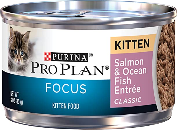 Purina Pro Plan Wet Cat Food Focus Kitten Salmon And Ocean Fish Entree 3 Ounce Can Pack Of 24 Amazon Co Uk Pet Supplies