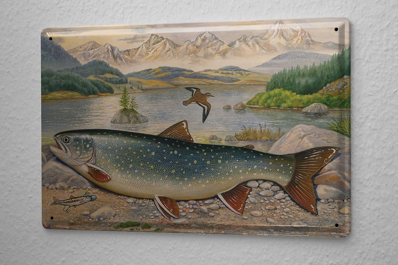 LEotiE SINCE 2004 Plaque en emaillee Scholz Truite Poissons Marins Poissons pr/édateurs carnassiers p/êche 20x30 cm