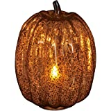 Brown Pumpkin Lantern with Flameless Candle,4 and 8 hour Timer for Thanksgiving Decorations, 9 inch Height…