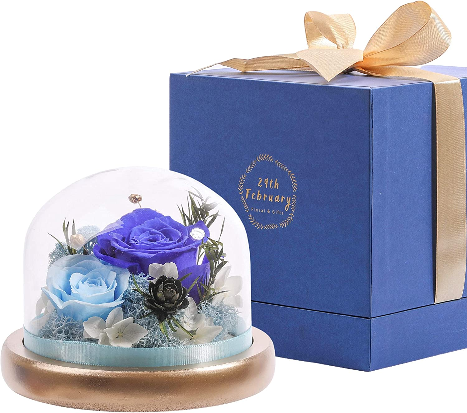 Komfort Home Fresh Flowers Preserved | Real Roses Floral Arrangement | Gift for Anniversary Birthday (Blue)