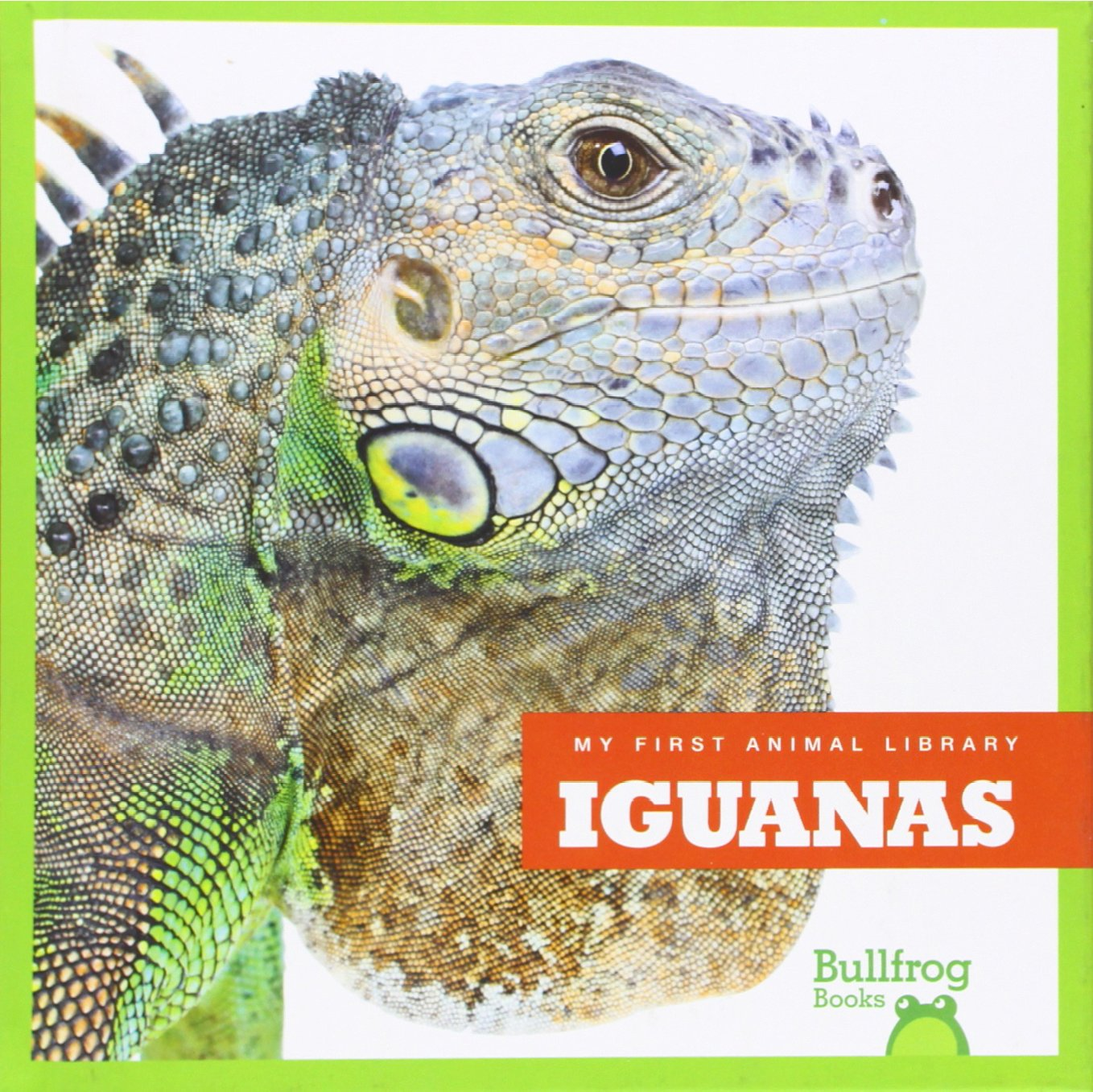 Iguanas (Bullfrog Books: My First Animal Library) by Jump!
