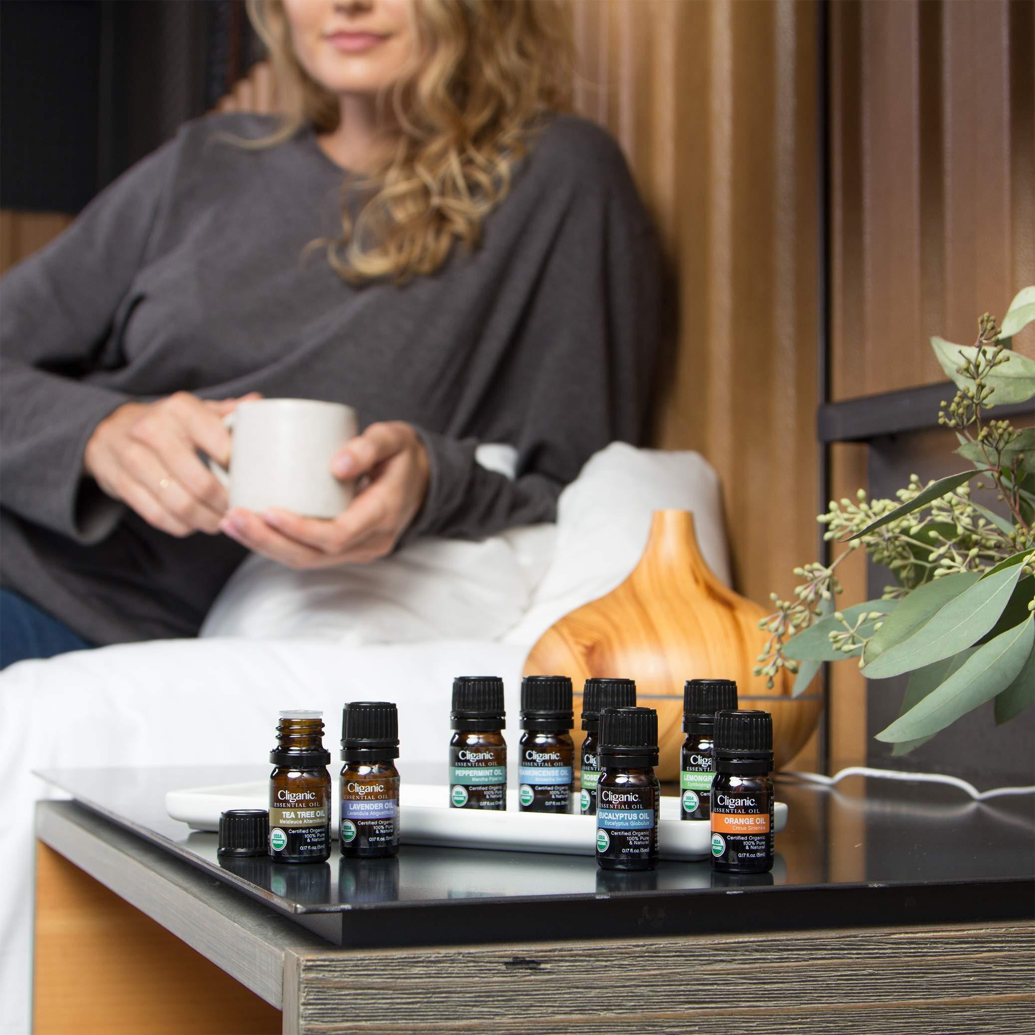 USDA Organic Aromatherapy Essential Oils Set