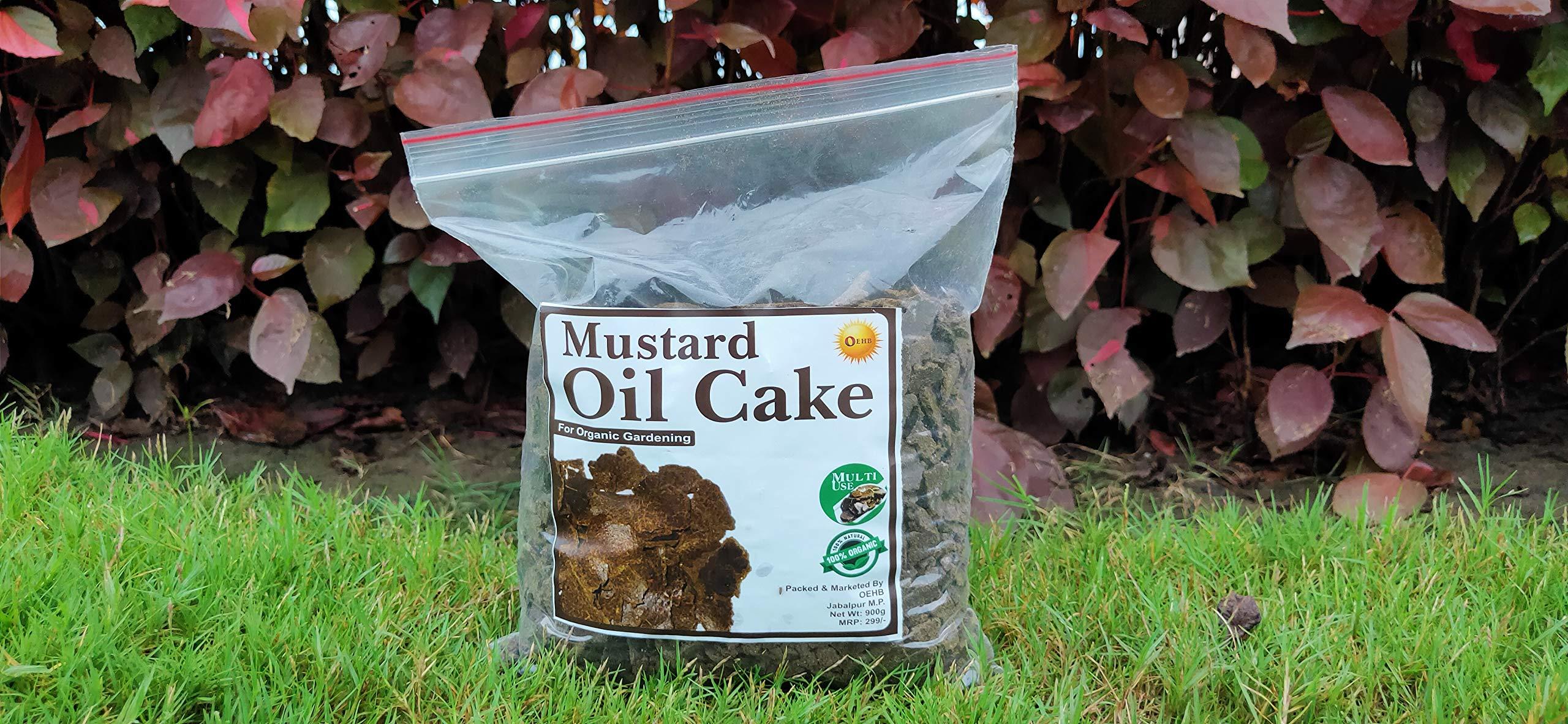 Generic Mustard Cake Fertilizer for Plants Growth, 900G