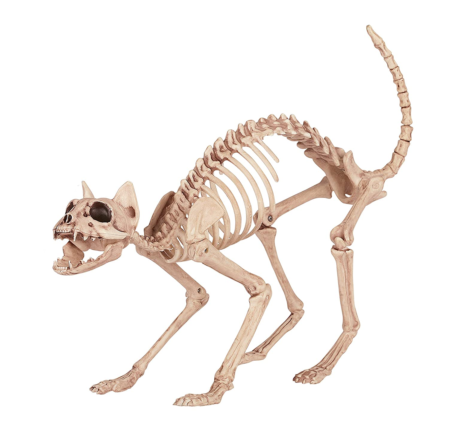 amazoncom crazy bonez skeleton cat toys games