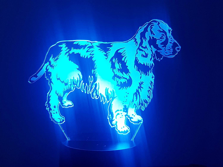 Englisch Springer Spaniel, 3D-Lampe LED