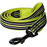 PetsUp Stylish Dog Leash for Small Medium Large Dogs (2cm Wide 200cm Long, Reflective Leash- Green)