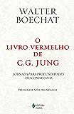 O livro vermelho de C. G. Jung: Jornada para profundidades desconhecidas