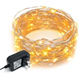 Amazoncom Everlasting Glow Micro LED Light String 30 Warm White