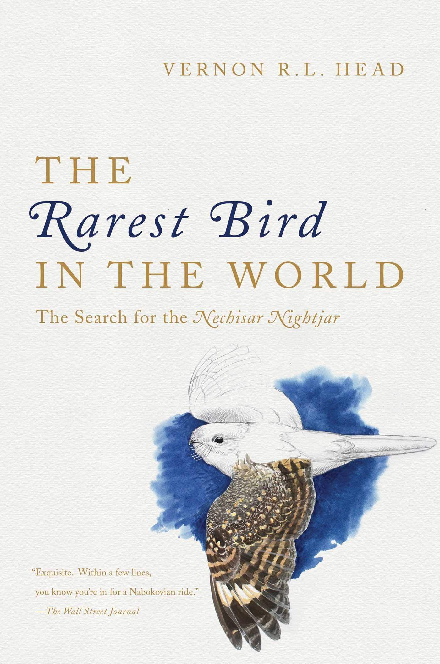 The Rarest Bird in the World: Amazon.co.uk: Head, Vernon R L:  9781681773476: Books