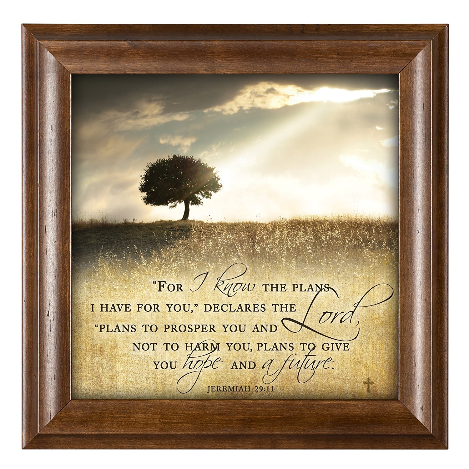 Amazon.com: For I know the Plans I Have For You Jeremiah 29:11 12 x ...