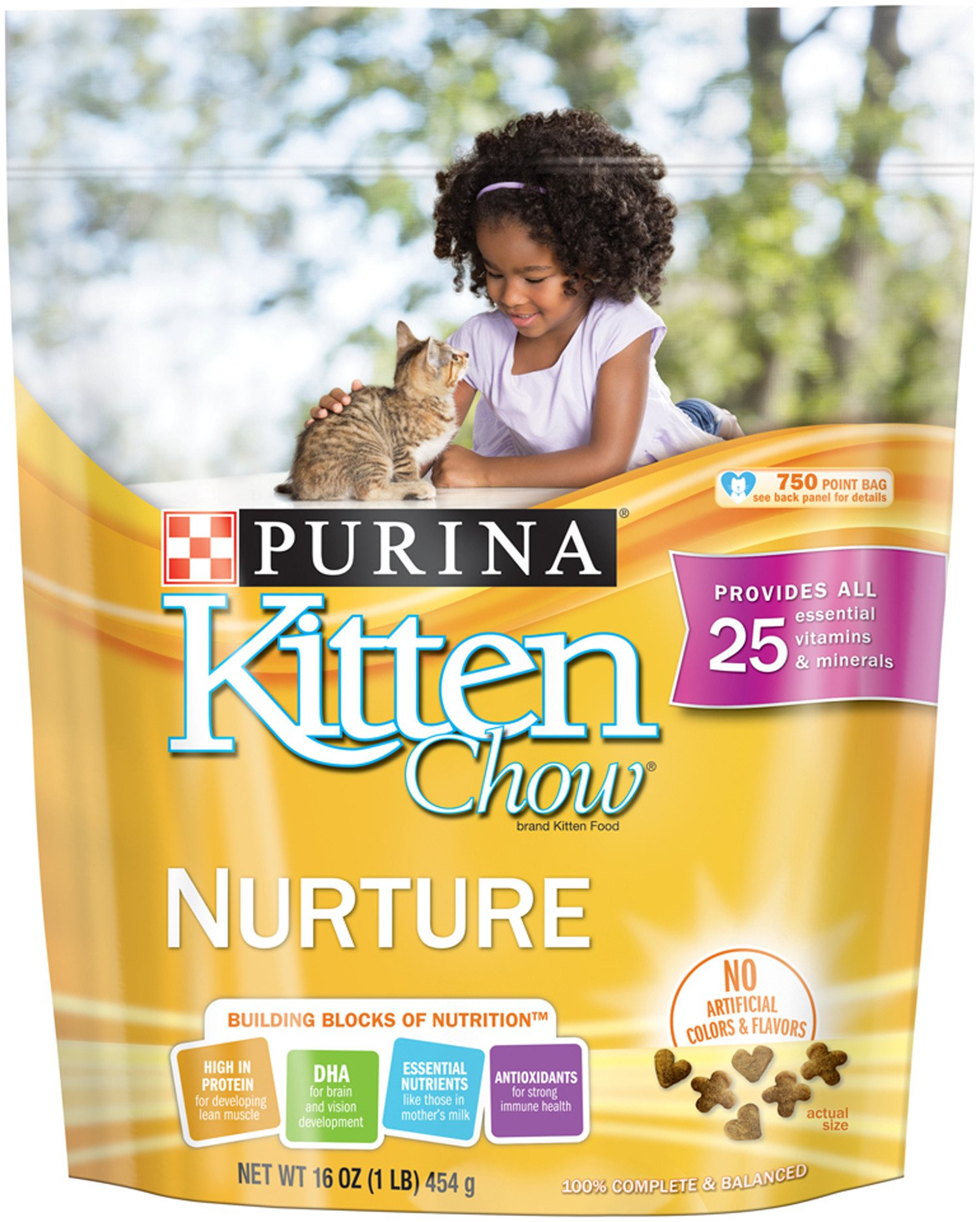 Purina Kitten Chow Dry Kitten Food, Nurture, 16 Ounce Carton, Pack Of 6 by Purina Cat Chow