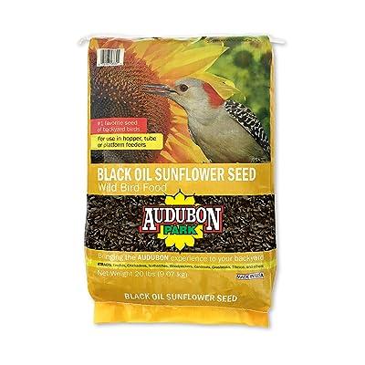 Audubon Park 10427 11286 Black Oil Sunflower Seed Wild Bird Food, 20 lb : Wild Bird Birdseed : Garden & Outdoor