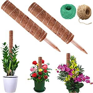 N/F Coir Totem Pole Coir Growing Poles,2 Pcs Plant Support Pole Totem Pole with 2 Pcs 984 Inches Garden Twine for Plant Support Extension, Climbing Plants, Creepers to Grow Upwards
