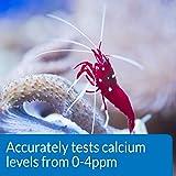 API CALCIUM TEST KIT Saltwater Aquarium Water