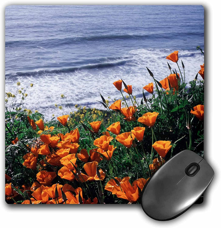 mp/_230024/_1 8 x 8 3D RoseCalifornia Big Sur Coast California Poppy Wildflowers Matte Finish Mouse Pad