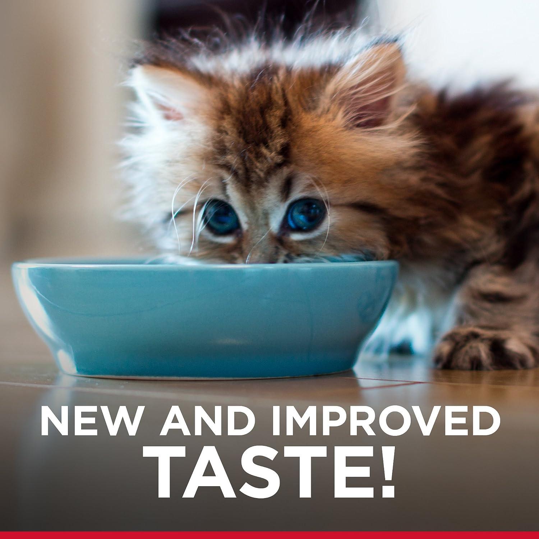 Amazon.com : Hill\'s Science Diet Kitten Food, Healthy Development ...
