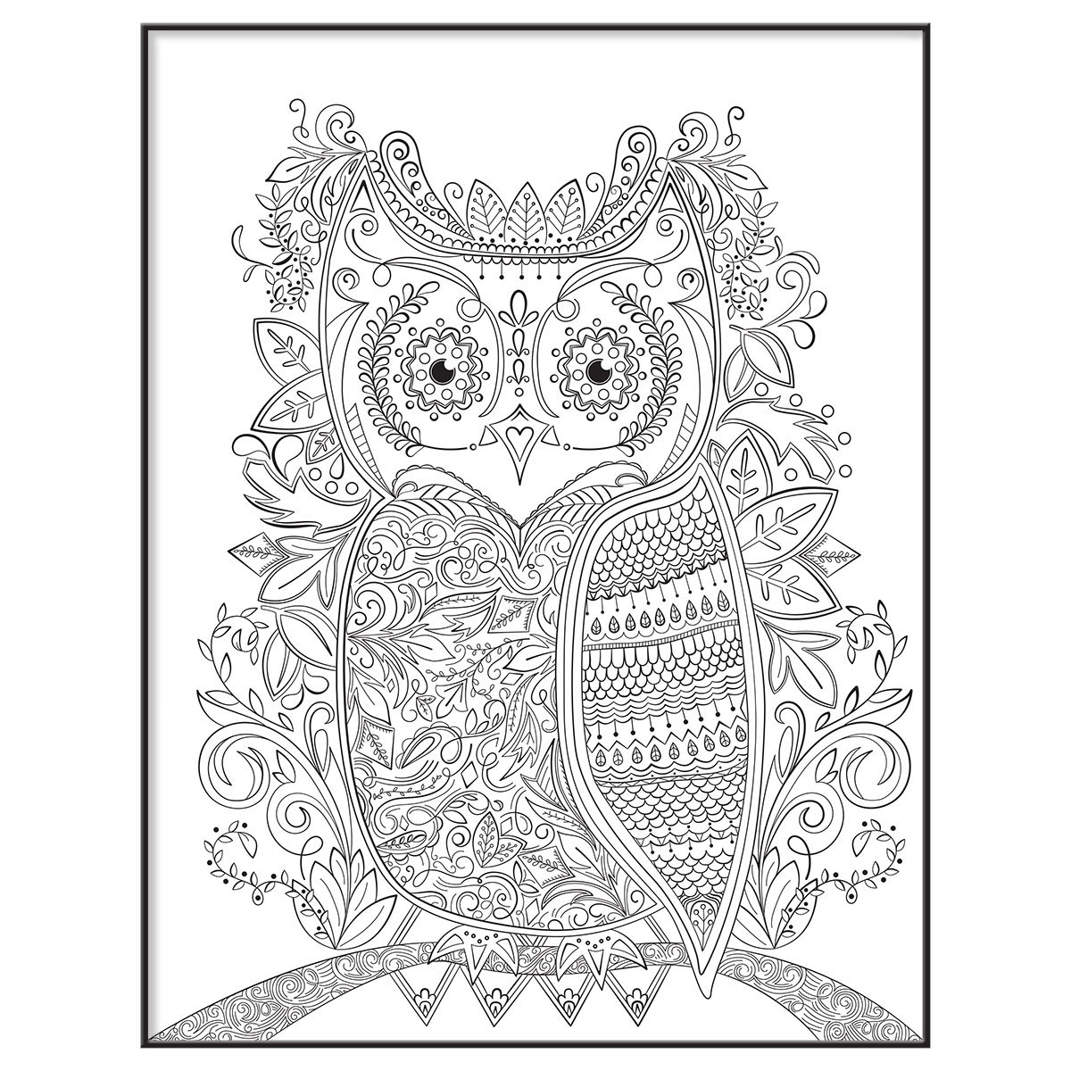 Owl Design 65633 MCS 10x13 Inch Time-Out Color-in Frame Adult Coloring Page MCS Industries