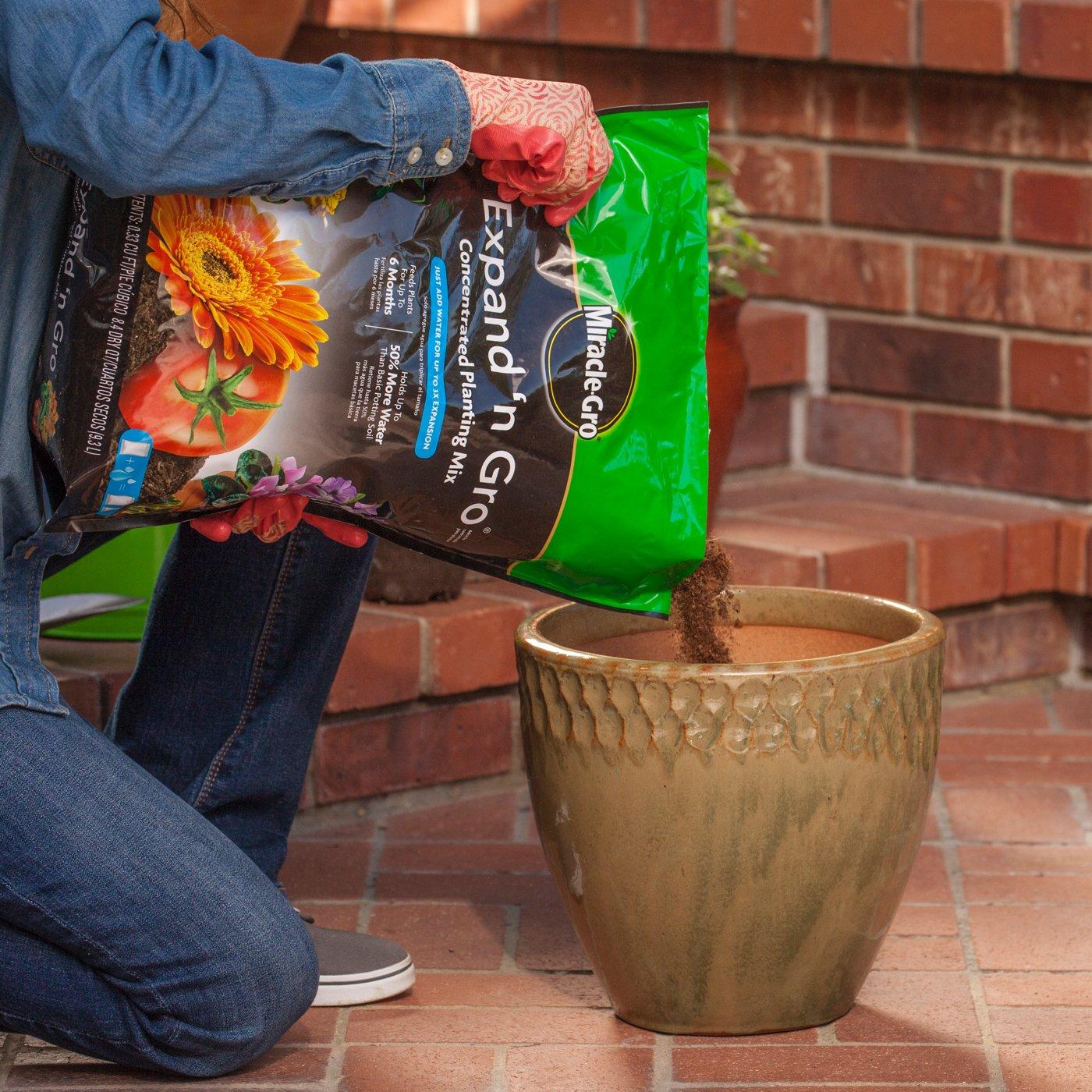 Amazon.com : Miracle-Gro Gardening Gift Pack : Garden & Outdoor