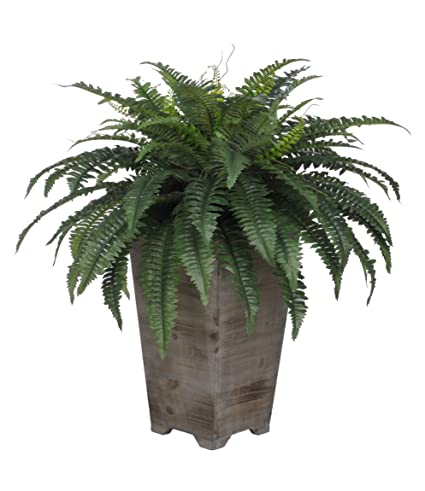 Amazon house of silk flowers artificial fern in grey wash wood house of silk flowers artificial fern in grey wash wood planter mightylinksfo