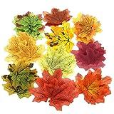 Gresorth 1000 PCS Fake Autumn Fall Maple Leaf in 10