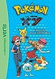 Pokémon 17 - L'Arène du Grand-Duc